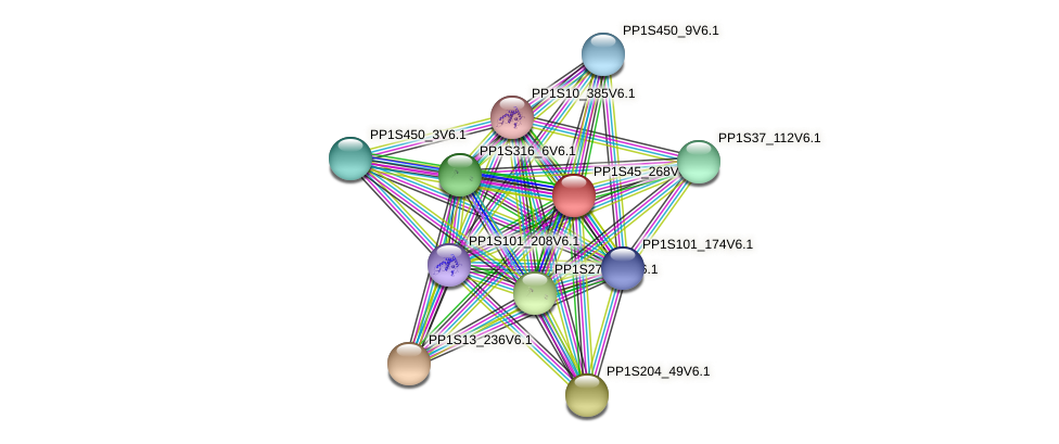 PP1S45_268V6.1 protein (Physcomitrella patens) - STRING interaction network