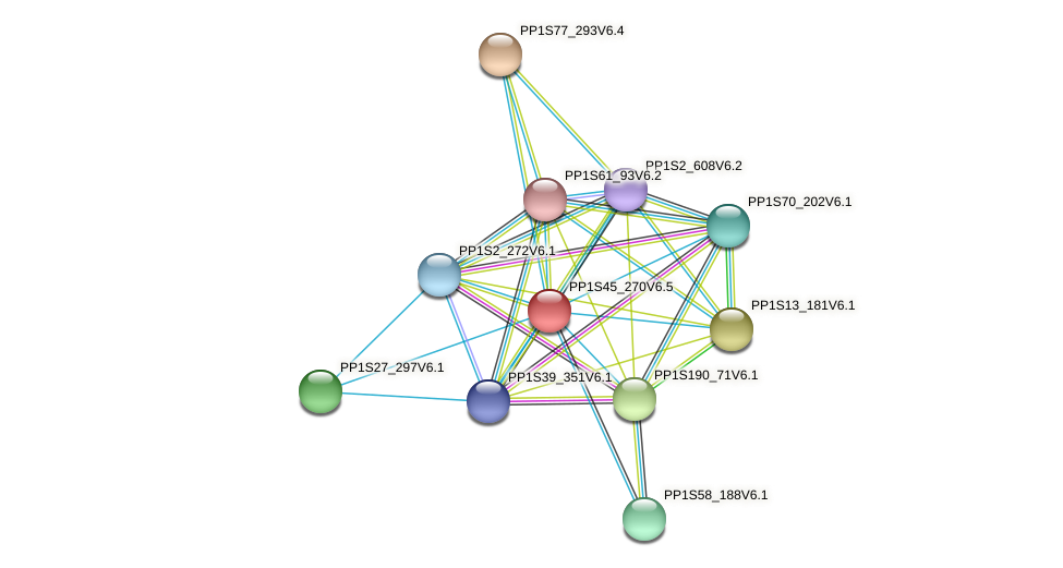PP1S45_270V6.1 protein (Physcomitrella patens) - STRING interaction network