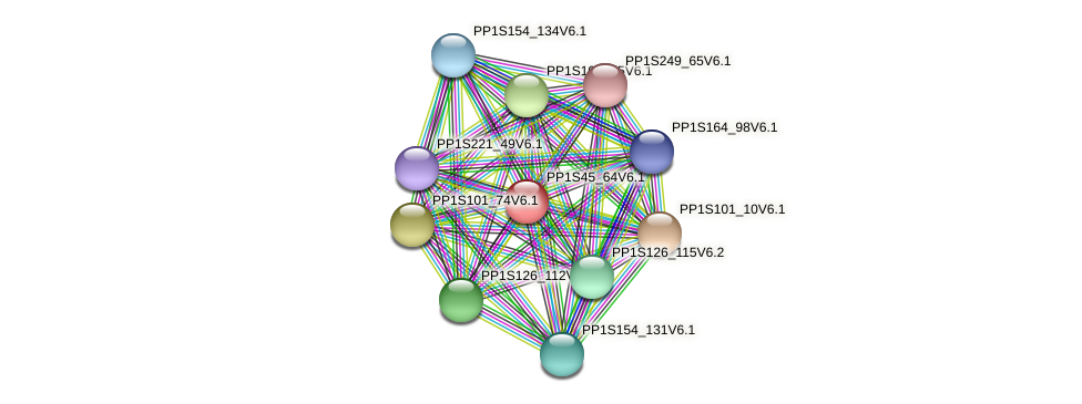 PP1S45_64V6.1 protein (Physcomitrella patens) - STRING interaction network