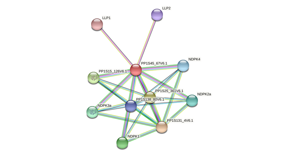 PP1S45_67V6.1 protein (Physcomitrella patens) - STRING interaction network