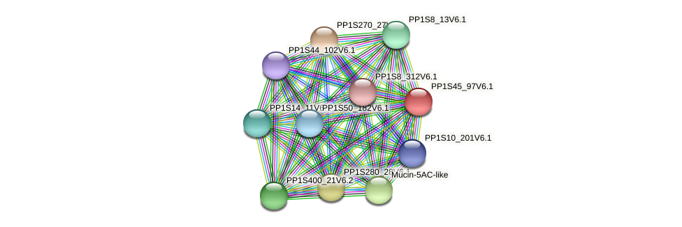 PP1S45_97V6.1 protein (Physcomitrella patens) - STRING interaction network