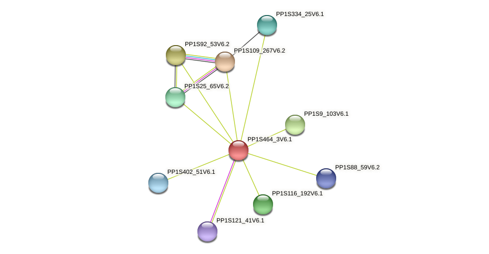 PP1S464_3V6.1 protein (Physcomitrella patens) - STRING interaction network