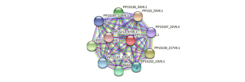 PP1S465_14V6.1 protein (Physcomitrella patens) - STRING interaction network