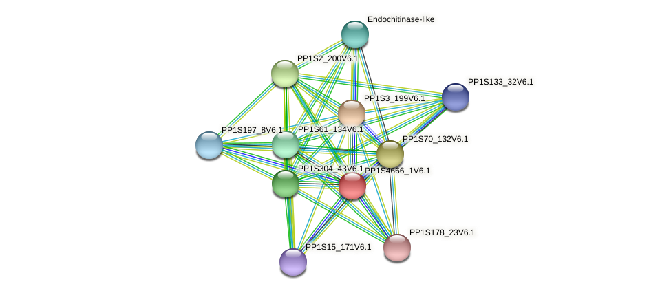 PP1S4666_1V6.1 protein (Physcomitrella patens) - STRING interaction network