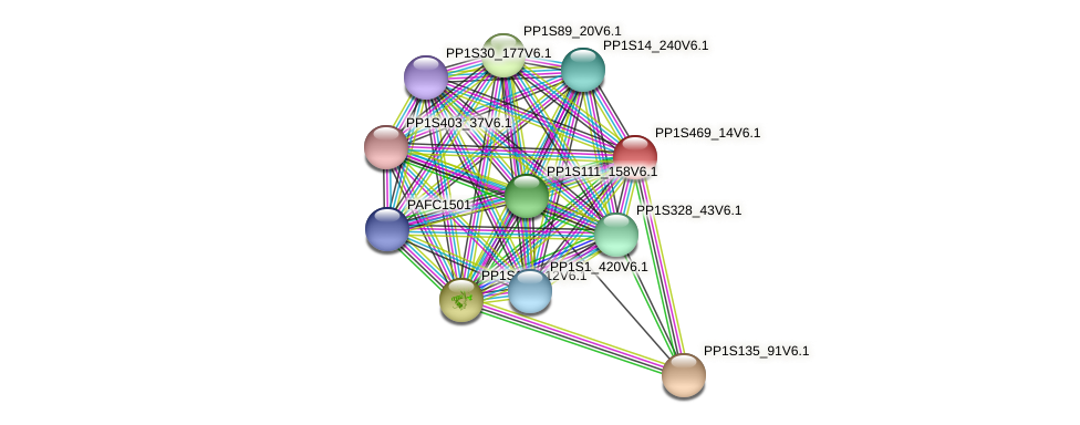 PP1S469_14V6.1 protein (Physcomitrella patens) - STRING interaction network