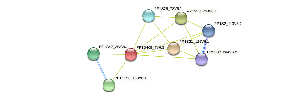 PP1S469_4V6.1 protein (Physcomitrella patens) - STRING interaction network