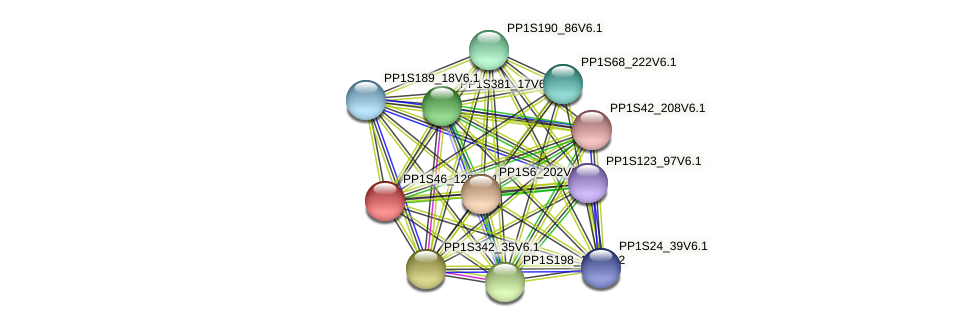 PP1S46_128V6.1 protein (Physcomitrella patens) - STRING interaction network