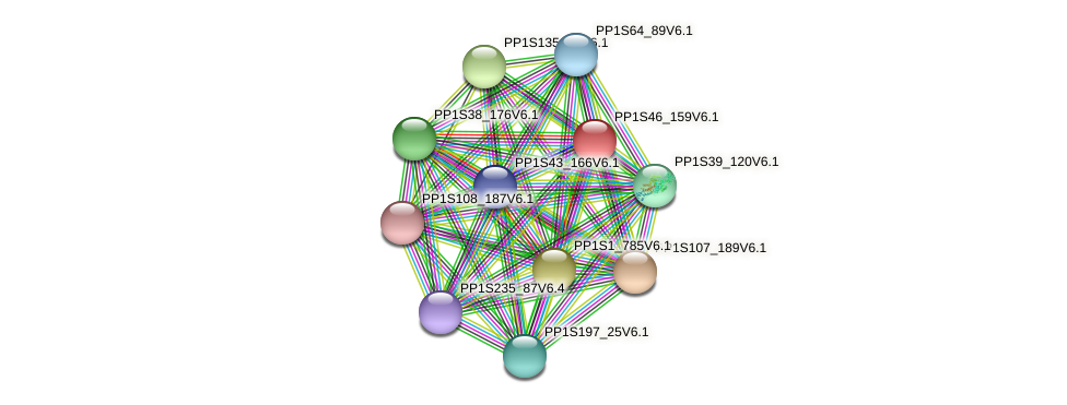 PP1S46_159V6.1 protein (Physcomitrella patens) - STRING interaction network