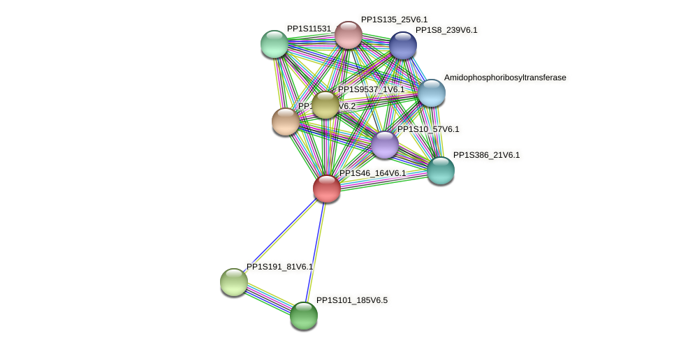 PP1S46_164V6.1 protein (Physcomitrella patens) - STRING interaction network