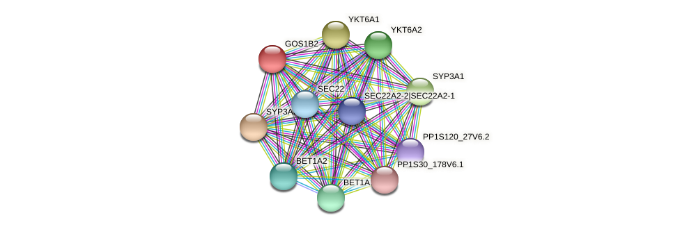 GOS1B2 protein (Physcomitrella patens) - STRING interaction network