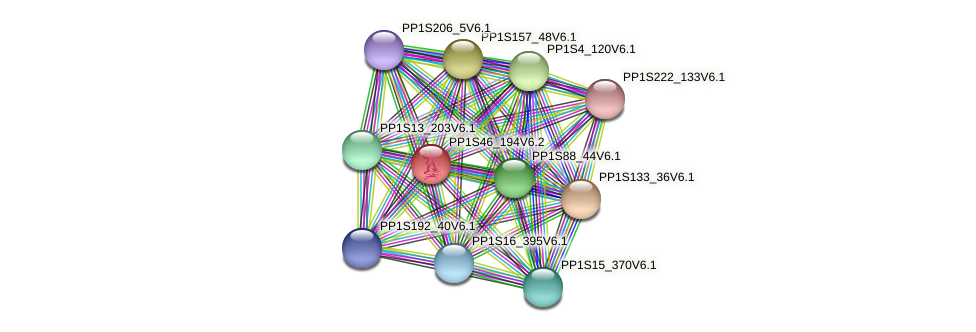 PP1S46_194V6.1 protein (Physcomitrella patens) - STRING interaction network