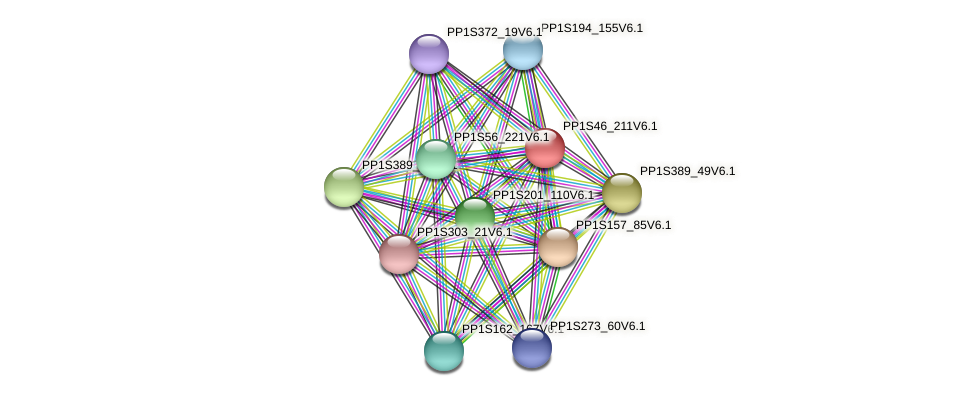 PP1S46_211V6.1 protein (Physcomitrella patens) - STRING interaction network