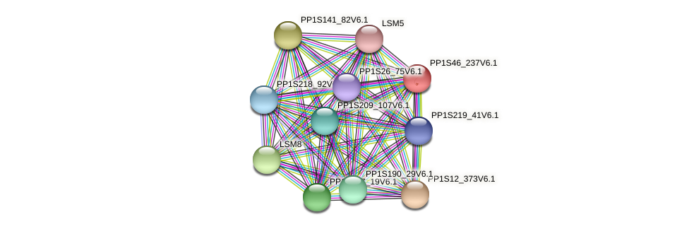 PP1S46_237V6.1 protein (Physcomitrella patens) - STRING interaction network