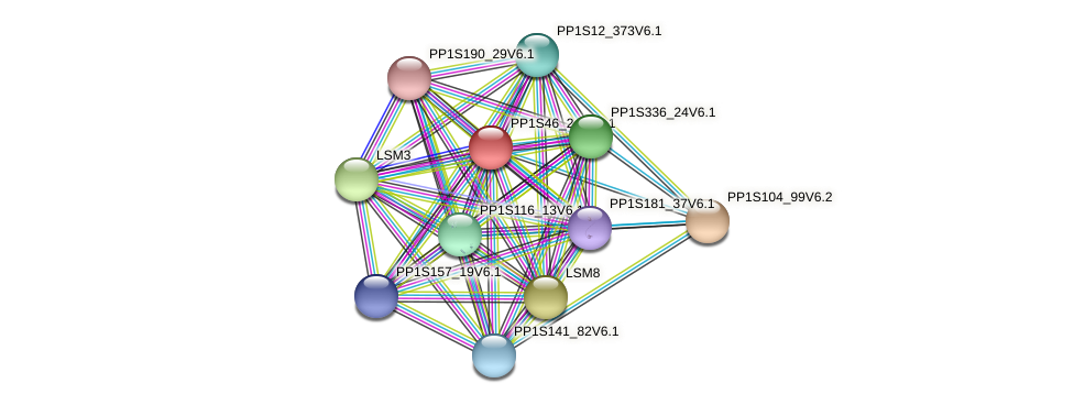 PP1S46_244V6.1 protein (Physcomitrella patens) - STRING interaction network