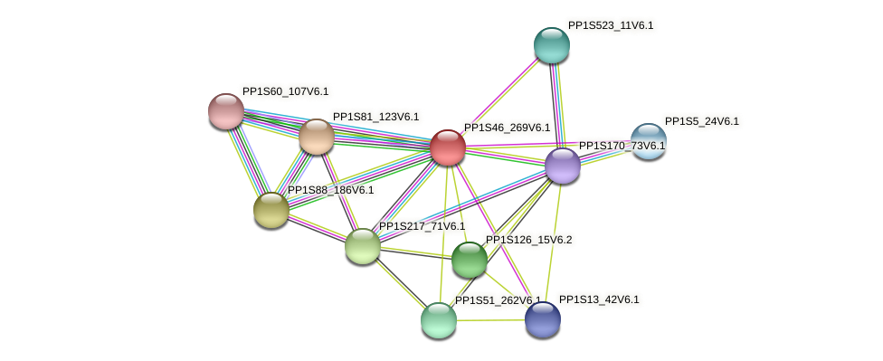 PP1S46_269V6.1 protein (Physcomitrella patens) - STRING interaction network