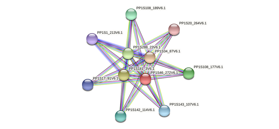 PP1S46_272V6.1 protein (Physcomitrella patens) - STRING interaction network