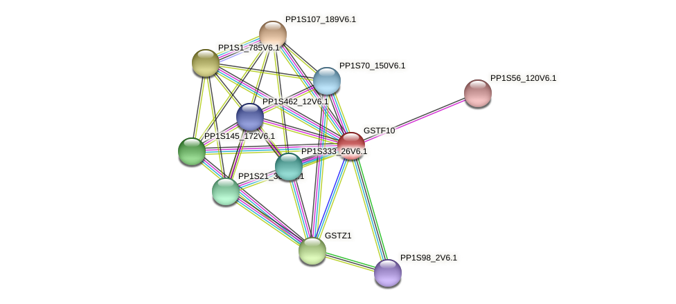 GSTF10 protein (Physcomitrella patens) - STRING interaction network