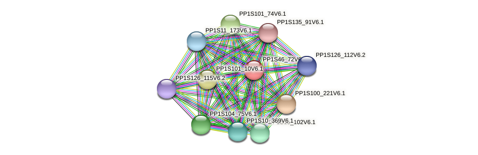 PP1S46_72V6.1 protein (Physcomitrella patens) - STRING interaction network