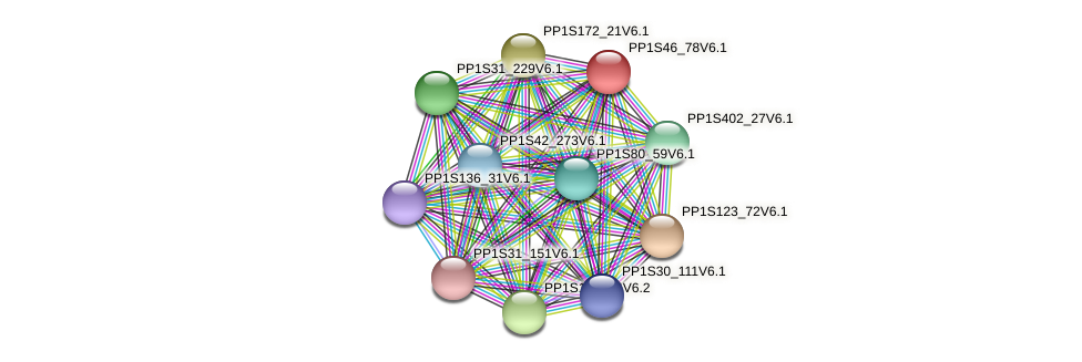 PP1S46_78V6.1 protein (Physcomitrella patens) - STRING interaction network