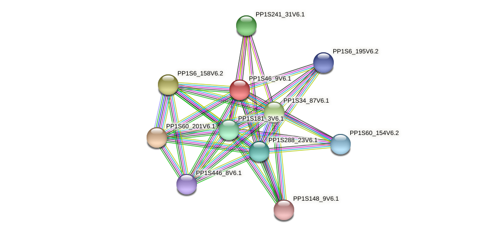 PP1S46_9V6.1 protein (Physcomitrella patens) - STRING interaction network