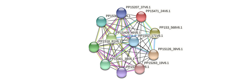 PP1S471_24V6.1 protein (Physcomitrella patens) - STRING interaction network