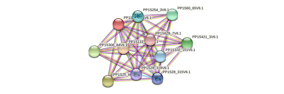 PP1S472_15V6.1 protein (Physcomitrella patens) - STRING interaction network