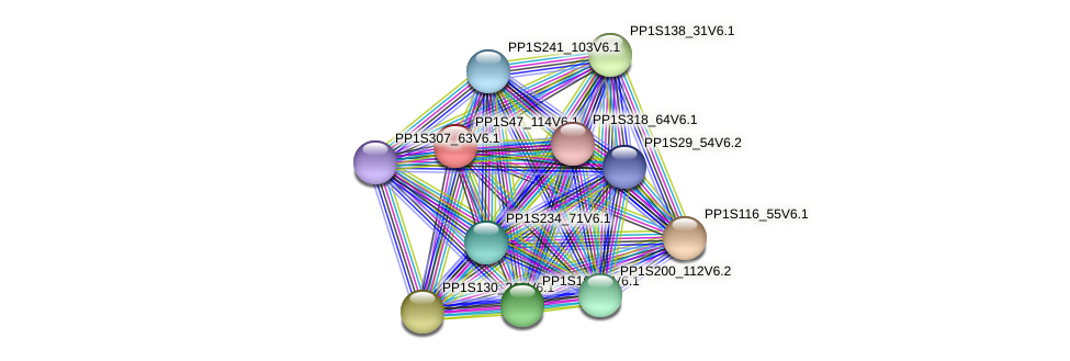 PP1S47_114V6.1 protein (Physcomitrella patens) - STRING interaction network