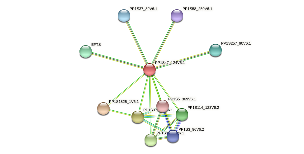 PP1S47_124V6.1 protein (Physcomitrella patens) - STRING interaction network