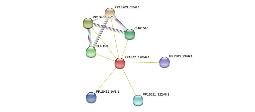 PP1S47_190V6.1 protein (Physcomitrella patens) - STRING interaction network