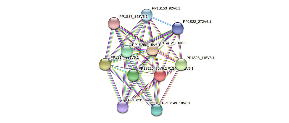 PP1S47_192V6.1 protein (Physcomitrella patens) - STRING interaction network