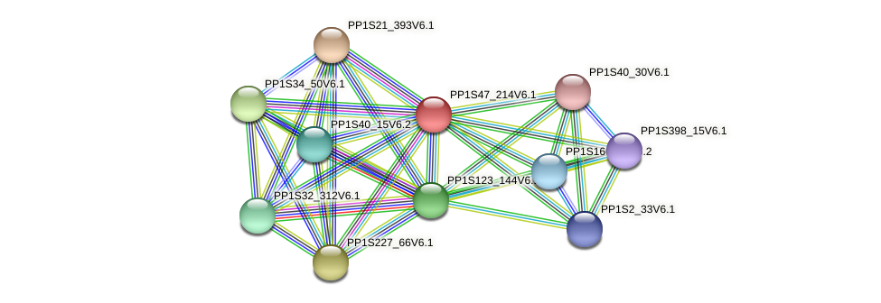 PP1S47_214V6.1 protein (Physcomitrella patens) - STRING interaction network