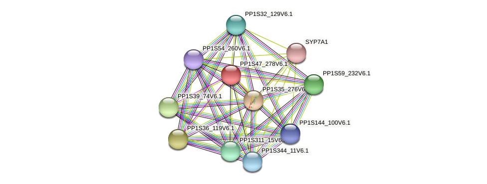 PP1S47_278V6.1 protein (Physcomitrella patens) - STRING interaction network
