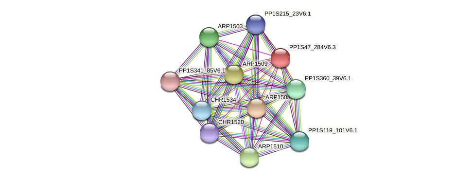 PP1S47_284V6.3 protein (Physcomitrella patens) - STRING interaction network