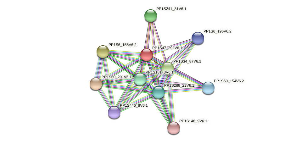 PP1S47_292V6.1 protein (Physcomitrella patens) - STRING interaction network