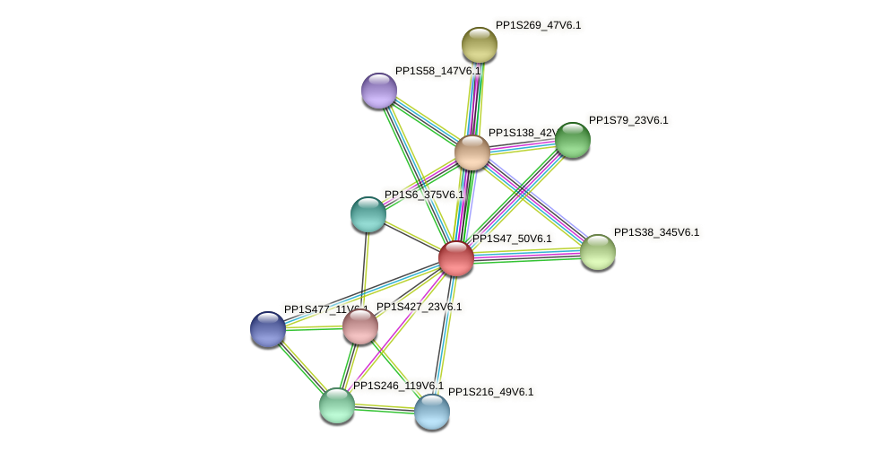PP1S47_50V6.1 protein (Physcomitrella patens) - STRING interaction network
