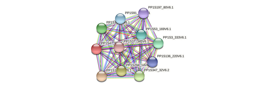 PP1S47_85V6.1 protein (Physcomitrella patens) - STRING interaction network