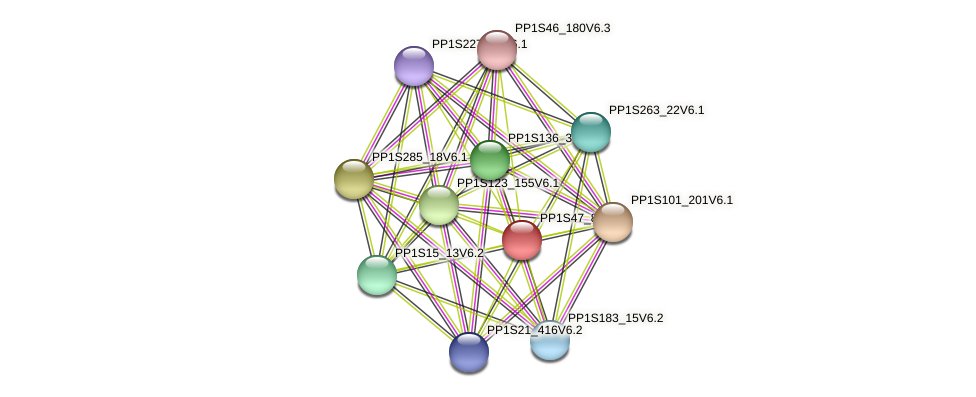 PP1S47_89V6.1 protein (Physcomitrella patens) - STRING interaction network
