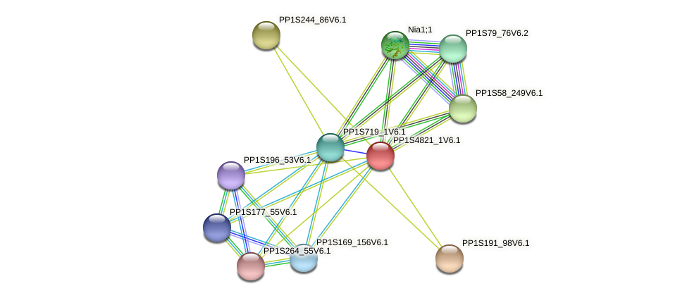 PP1S4821_1V6.1 protein (Physcomitrella patens) - STRING interaction network