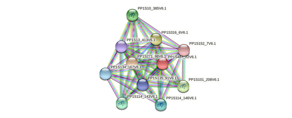 PP1S487_22V6.1 protein (Physcomitrella patens) - STRING interaction network