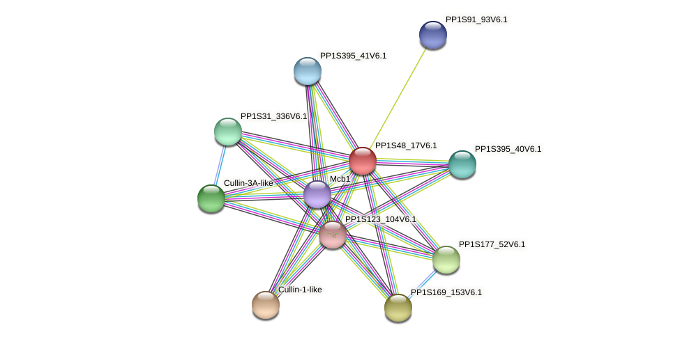 PP1S48_17V6.1 protein (Physcomitrella patens) - STRING interaction network