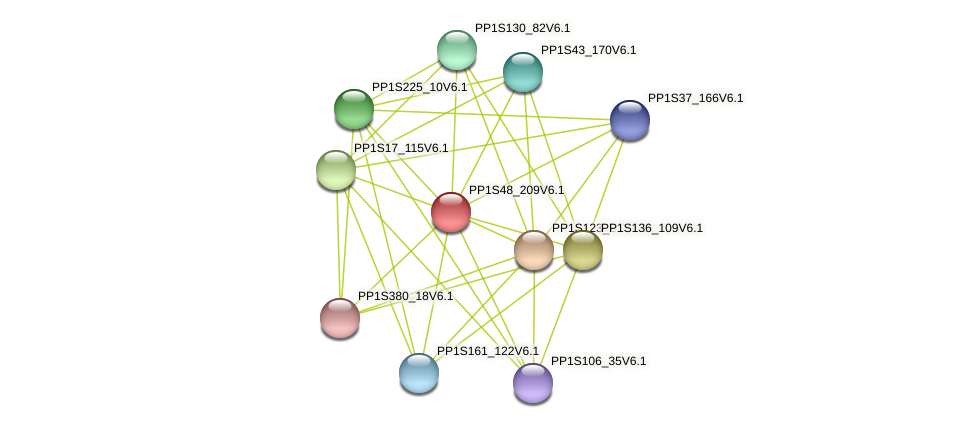 PP1S48_209V6.1 protein (Physcomitrella patens) - STRING interaction network