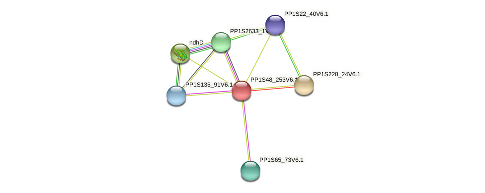 PP1S48_253V6.1 protein (Physcomitrella patens) - STRING interaction network