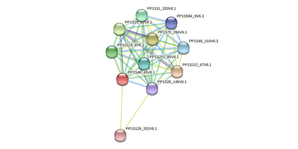 PP1S48_45V6.1 protein (Physcomitrella patens) - STRING interaction network