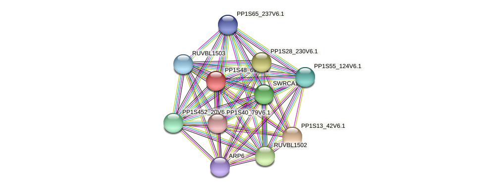 PP1S48_69V6.1 protein (Physcomitrella patens) - STRING interaction network