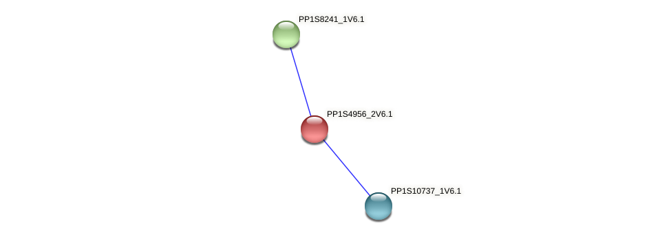 PP1S4956_2V6.1 protein (Physcomitrella patens) - STRING interaction network