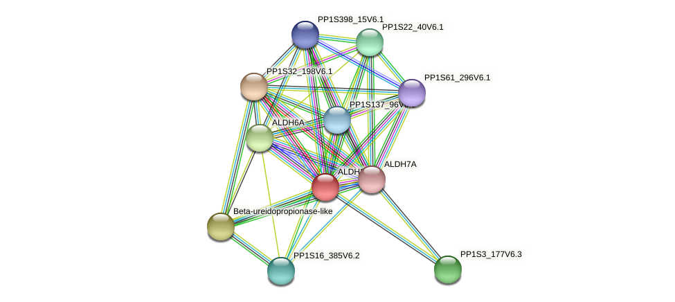 ALDH2B protein (Physcomitrella patens) - STRING interaction network