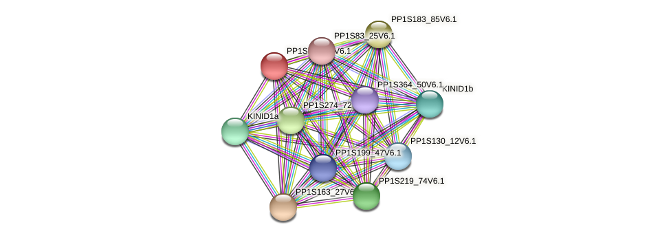 PP1S49_111V6.1 protein (Physcomitrella patens) - STRING interaction network