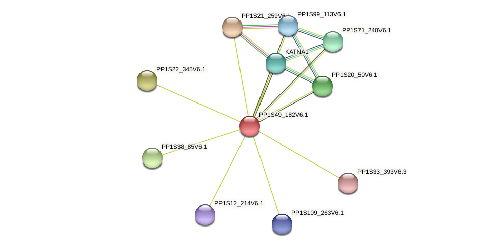 PP1S49_182V6.1 protein (Physcomitrella patens) - STRING interaction network