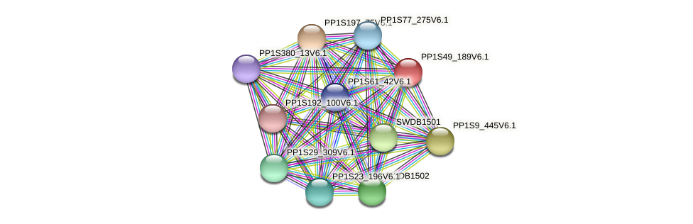 PP1S49_189V6.1 protein (Physcomitrella patens) - STRING interaction network