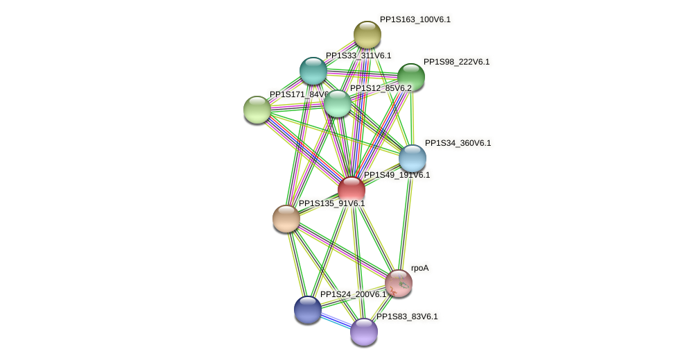 PP1S49_191V6.1 protein (Physcomitrella patens) - STRING interaction network